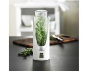 Fresh Herb Емкость для длительного хранения зелени, Trudeau, Канада