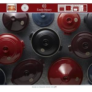 COCOTTE Кастрюля-жаровня для духовки и плиты, 6 л, 40 x 27 см, Emile Henry, арт. 74747, фото 4