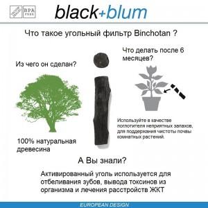 Eau Good DUO эко-бутылка для воды с клапаном для питья и угольным фильтром, 800 мл, черный, Black+Blum, арт. 90720, фото 2