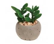Горшок для растений succulent pot plant, Gardman