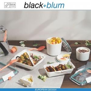 Bento Box Appetit ланч-бокс с разделителем, белый-оранжевый, Black+Blum, арт. 12170, фото 6