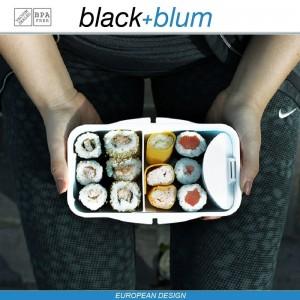 Bento Box Appetit ланч-бокс с разделителем, черный-красный, Black+Blum, арт. 12171, фото 7