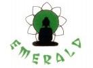 Чайный сервиз Isabella, 21 предмет на 6 персон, костяной фарфор, Emerald
