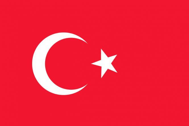 Профессиональный пресс для гранатов и цитрусовых повышенной мощности, сталь, Maskot, Турция