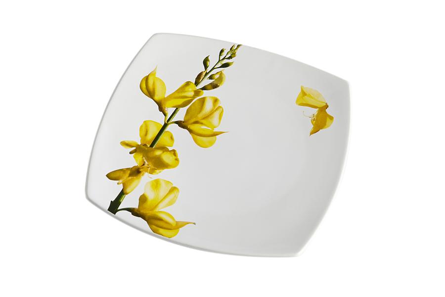 Купить квадратные тарелки в интернет магазине дешево